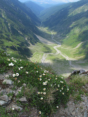 Vistea valley from close to the peak, Moldoveanu photo
