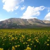 سهند - 15 خرداد ماه, Sahand