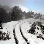 Year of snow., Nevado de Colima