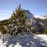 The lovely White Season, Nevado de Colima