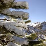 The season expected by all, Nevado de Colima