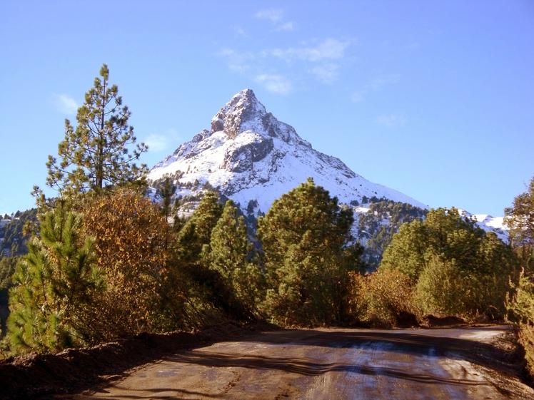 Peack and Pines, Nevado de Colima