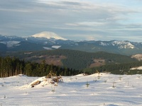 View from Larch Mountain, Larch Mountain (Clark County, Washington) photo