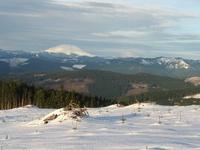 View from Larch Mountain, Larch Mountain (Clark County, Washington) photo