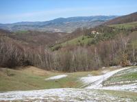 Crnokosa photo