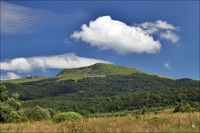 Tarnica photo