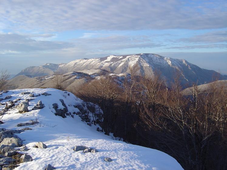 mount mòtola, Cervati