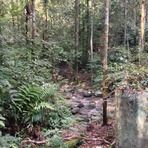crossing river, Gunung Angsi