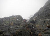 Climbing Margherita Peak on Mt. Stanley, Mount Stanley or Margherita photo