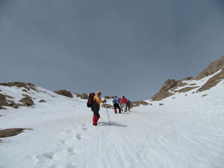 climbing mount parau, Bisotoon