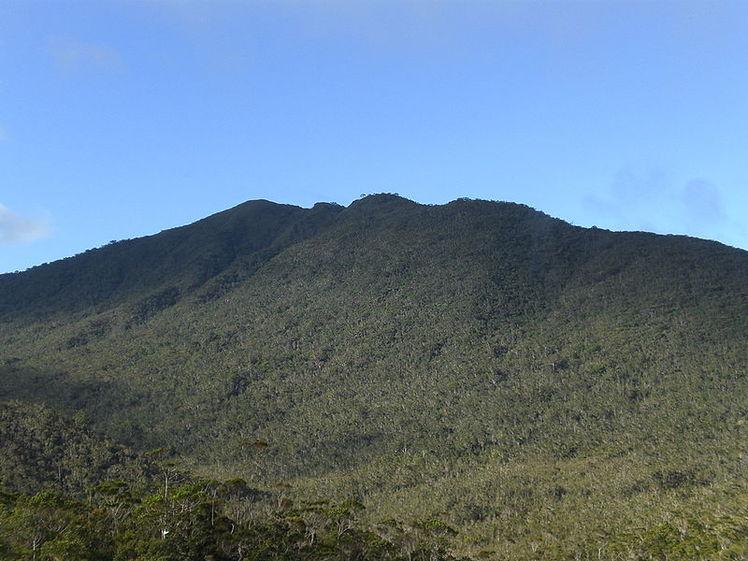 Mt. Hamiguitan, Mount Hamiguitan