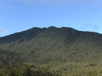 Mt. Hamiguitan, Mount Hamiguitan photo