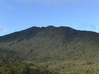 Mt. Hamiguitan, Mount Hamiguitan photo