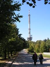 Łysa Góra photo