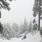 Nevada 2010, Nevado de Colima