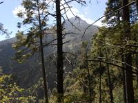 """Nevado de Colima ruta """"La Escalera"""" photo"""