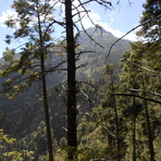 "Nevado de Colima ruta ""La Escalera"""