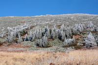southwest plateau of Iremel photo