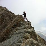Pico de Posets