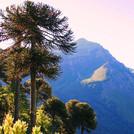 Valle del Naranjo