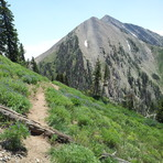 Mount Nebo from North Peak Trail