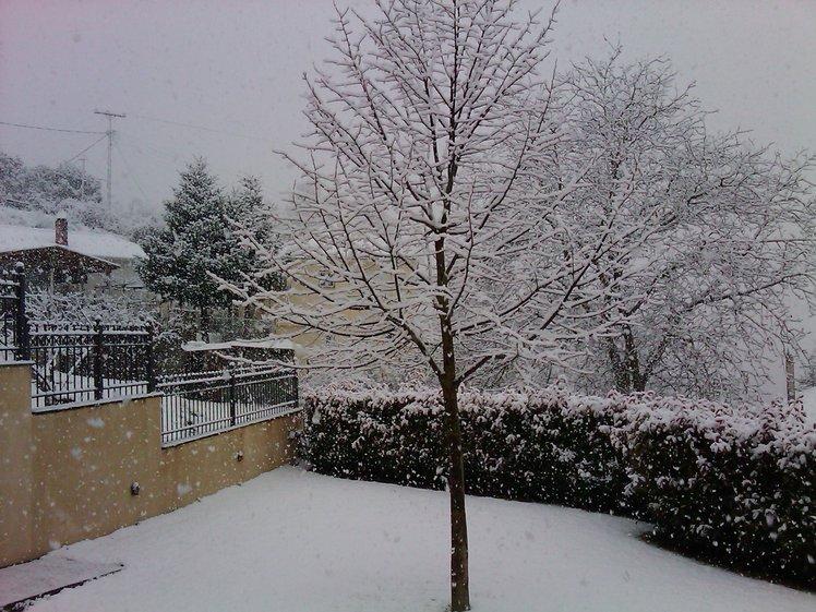 Eastern Kalavryta: 10 Feb 2012, Helmos