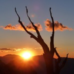 Sunrise, from camp on the Mountaineers Route, Mount Whitney