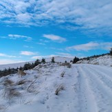 close to summit, Croghan Mountain