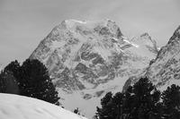 Mont Collon photo