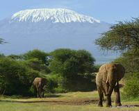 Kilimanjaro from southwest, Mount Kilimanjaro photo