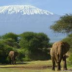 Kilimanjaro from southwest, Mount Kilimanjaro