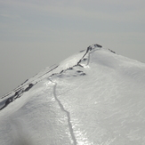 parsoon summit
