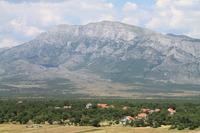 Dinara photo