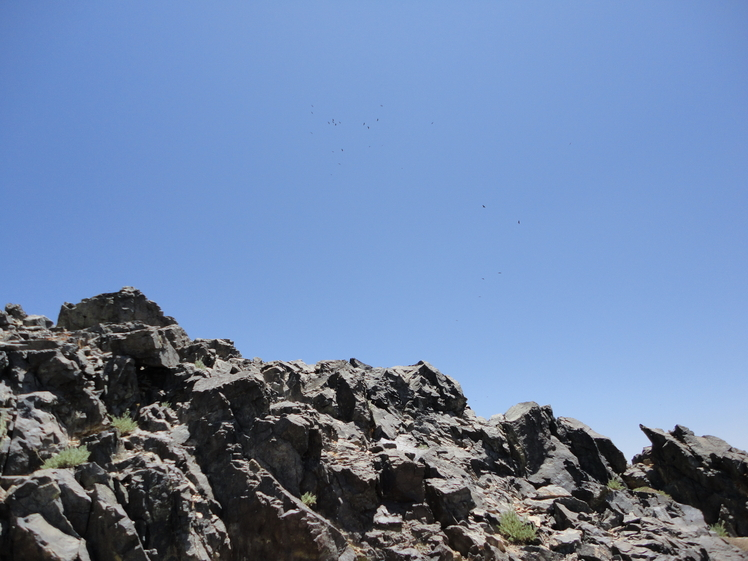 Mount Karkas