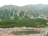 Voloszyn, view from Waksmundzka Valley, Wołoszyn photo