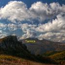 Tarnica widziana od SE (view from SE)