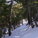 Mt. Islip Trail, Mount Islip