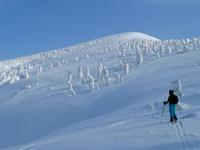 The Snow Monsters of Hakkoda, Hakkoda Group photo