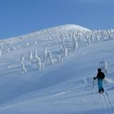 The Snow Monsters of Hakkoda, Hakkoda Group