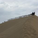 naser ramezani maranjab desert, Karkas