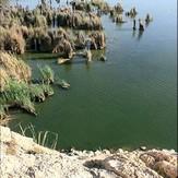 naser ramezani parishan lake, Dena