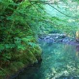 naser ramezani laton water fall(spinas forest), سبلان