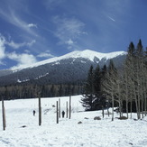 Humphrey's Peak, Humphreys Peak