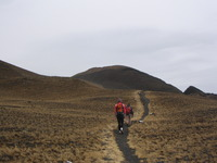 Last section of the trail to the summit, Cameroon Mountain photo