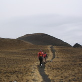 Last section of the trail to the summit, Cameroon Mountain