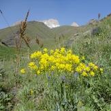 Spring Ascent, Azad Kuh or Shah-zaade Kaj Gardan