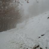 Last Winter, Kolakchal