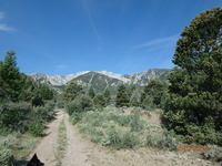The long walk toward Currant Mountain photo
