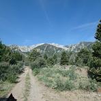 The long walk toward Currant Mountain