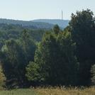 Łysiec / Łysa Góra / Święty Krzyż 595 m